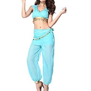 Princess Jasmine Adult Costume Halloween